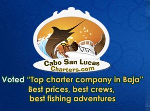 loscabosfishingcharters